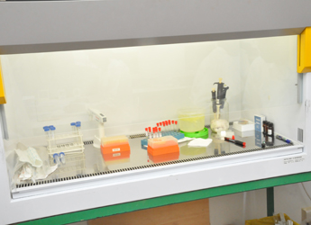 Bio 24 laboratory tools