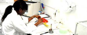 Comment prévenir l'anémie ?